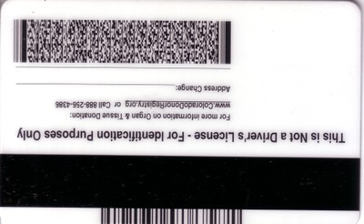 Drivers License (rear)